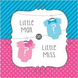 Little Man or Little Miss Gender Reveal Large Napkins (Pack of 16)